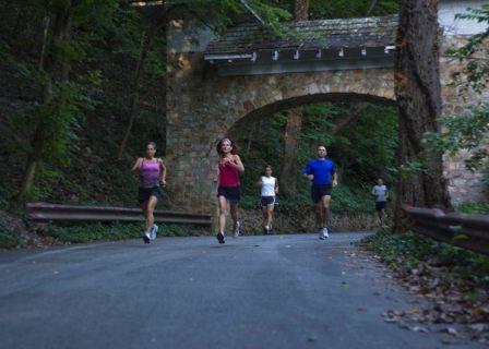 blue-ridge-parkway-marathon-runners