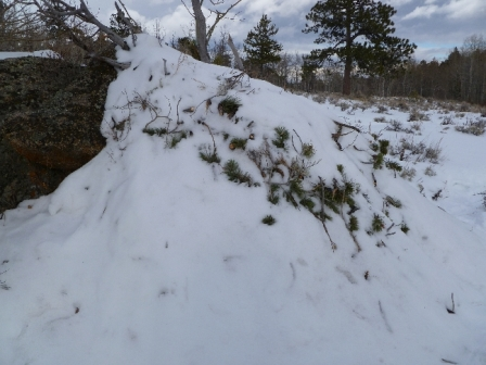 twin-mountain-trudge-snow-shelter